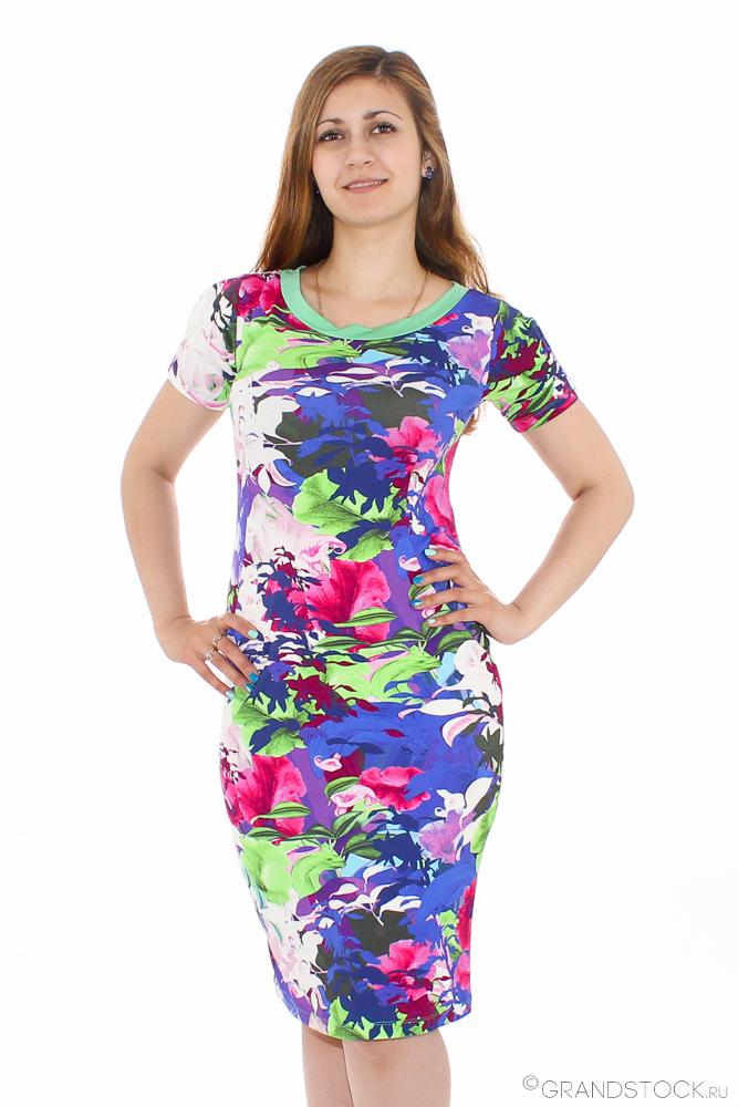 Платье женское НиццаПлатья<br>Любите яркие, оригинальные и нестандартные вещи? Хотите разнообразить летний гардероб или просто добавить красок в однообразные будни? Обратите внимание на платье женское Ницца!<br>Изящный и элегантный крой подчеркивает преимущества фигуры, ненавязчиво скрывая проблемные места. Благодаря обширному размерному ряду легко подобрать модель под себя. Вискоза - достаточно эластичный материал, приятный телу и не вызывающий зуд или аллергию. Ткань позволяет коже дышать, обладает оптимальной гигроскопичностью и способствует естественной терморегуляции.<br>Красивое и необычное женское платье Ницца - выгодное приобретение, среди прочих преимуществ которого - доступная цена.<br>Данное платье является маломеркой на один размер. Учитывайте это при выборе размера. Размер: 54<br><br>Принадлежность: Женская одежда<br>Основной материал: Вискоза<br>Страна - производитель ткани: Россия, г. Иваново<br>Вид товара: Одежда<br>Материал: Вискоза<br>Тип застежки: Без застежки<br>Состав: 95% вискоза, 5% лайкра<br>Длина рукава: Короткий<br>Длина: 18<br>Ширина: 12<br>Высота: 7<br>Размер RU: 54
